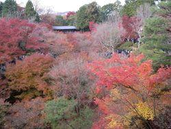 東福寺 橋から